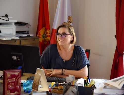 Перовић: Аврамовић забавља которску јавност